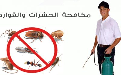 شركة مكافحة حشرات بمحايل عسير-0552378240
