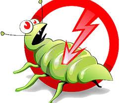 شركة مكافحة حشرات بخميس مشيط-0536289213