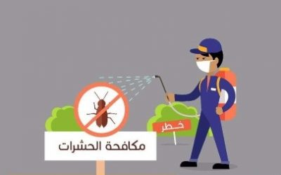 شركة مكافحة حشرات بجازان 0538156829