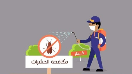 شركة مكافحة حشرات بابوعريش رش مبيدات بصبيا وصامطة 0538156829